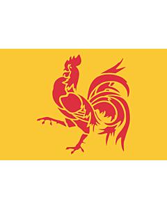 Tisch-Fahne / Tisch-Flagge: Wallonien 15x25cm