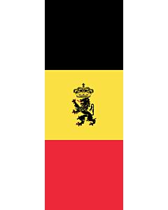 Flagge:  Belgien  |  Hochformat Fahne | 6m² | 400x150cm