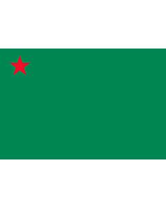 Flag: Benin  1975–1990 |  landscape flag | 2.16m² | 23sqft | 120x180cm | 4x6ft
