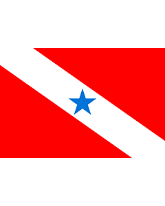 Flag: Pará |  landscape flag | 0.24m² | 2.5sqft | 40x60cm | 1.3x2foot