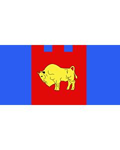 Flag: Brest voblast, Belarus |  landscape flag | 1.35m² | 14.5sqft | 80x160cm | 30x60inch