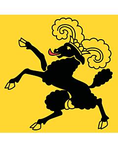 Flag: Schaffhausen |  0.24m² | 2.5sqft | 50x50cm | 20x20inch