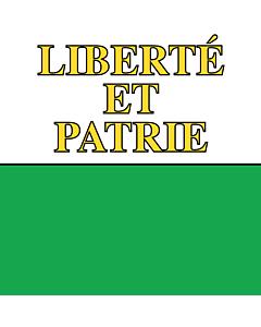 Bandera: República y cantón de Vaud |  0.24m² | 50x50cm