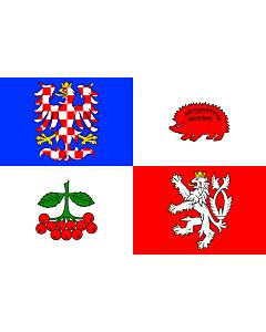 Flag: Vysočina Region |  landscape flag | 0.24m² | 2.5sqft | 40x60cm | 1.3x2foot