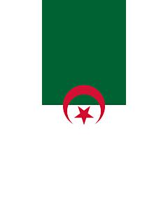 Drapeau: bannière drapau avec tunnel et avec crochets Algérie |  portrait flag | 3.5m² | 300x120cm