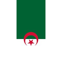 Drapeau: bannière drapau avec tunnel et avec crochets Algérie |  portrait flag | 6m² | 400x150cm