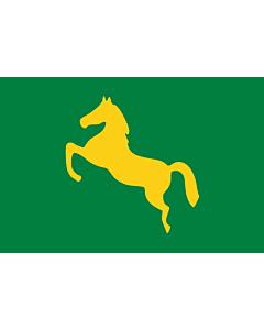 Flag: Ash Sharqiyah | Egypt s Ash Sharqiyah Governorate |  landscape flag | 1.35m² | 14.5sqft | 90x150cm | 3x5ft