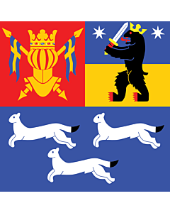 Bandera: Provincia de Finlandia Occidental |  3.75m² | 190x190cm