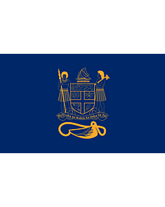 Flag: Standard of the President of Fiji bearing the full Coat of Arms of Fiji and a traditional Knot and Whale s tooth in Golden-Yellow |  landscape flag | 1.35m² | 14.5sqft | 90x150cm | 3x5ft
