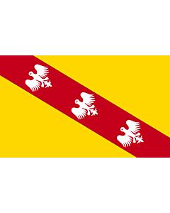 Flag: Lorraine |  landscape flag | 0.24m² | 2.5sqft | 40x60cm | 1.3x2foot