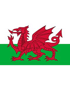 Indoor-Flag: Wales 90x150cm