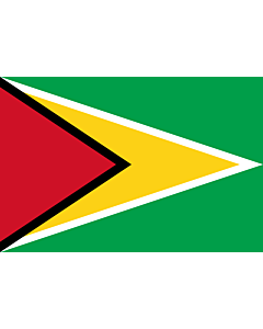 Flag: Guyana |  landscape flag | 0.375m² | 4sqft | 50x75cm | 1.5x2.5ft