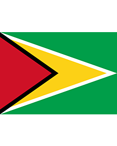 Flag: Guyana |  landscape flag | 0.7m² | 7.5sqft | 70x100cm | 2x3ft