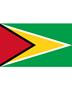 Flag: Guyana |  landscape flag | 1.35m² | 14.5sqft | 90x150cm | 3x5ft