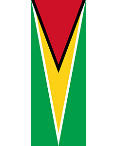 Vertical Hanging Beam Flag: Guyana |  portrait flag | 6m² | 64sqft | 400x150cm | 13x5ft