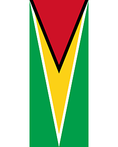 Vertical Hanging Swivel Crossbar Banner Flag: Guyana |  portrait flag | 3.5m² | 38sqft | 300x120cm | 10x4ft