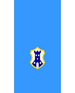 Flag: City of Pazin |  portrait flag | 1.35m² | 14.5sqft | 90x150cm | 3x5ft