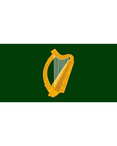 Drapeau: Leinster |  drapeau paysage | 6m² | 170x340cm