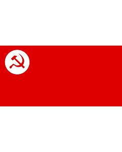 Bandera: RSP |  bandera paisaje | 0.06m² | 17x34cm