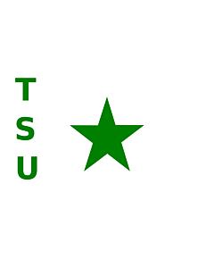 Bandera: TSU |  bandera paisaje | 0.06m² | 20x30cm