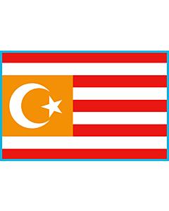 Flag: Turquestan | Turquestan Unificat |  landscape flag | 1.35m² | 14.5sqft | 90x150cm | 3x5ft