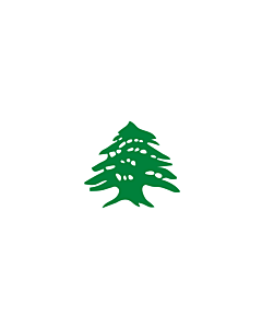 Flag: Cedar | Lebanon after the fall of the Ottoman empire |  landscape flag | 1.35m² | 14.5sqft | 90x150cm | 3x5ft