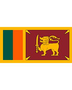 Flagge: Large Ceylon 1951-1972  |  Querformat Fahne | 1.35m² | 80x160cm