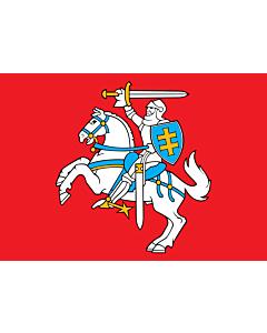 Flag: Lithuania |  landscape flag | 0.7m² | 7.5sqft | 70x100cm | 2x3ft
