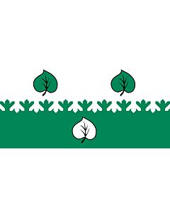 Flag: City of Aloja, Latvia |  landscape flag | 1.35m² | 14.5sqft | 80x160cm | 30x60inch