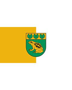 Flag: City of Baloži, Latvia |  landscape flag | 2.16m² | 23sqft | 100x200cm | 40x80inch