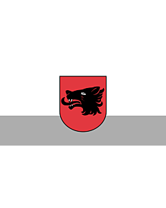 Flag: City of Balvi, Latvia |  landscape flag | 1.35m² | 14.5sqft | 80x160cm | 30x60inch