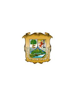 Flagge: XXS Coahuila  |  Querformat Fahne | 0.24m² | 40x60cm