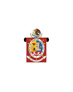 Flagge: XXS Oaxaca  |  Querformat Fahne | 0.24m² | 40x60cm