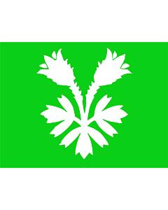 Bandera: Oppland |  bandera paisaje | 0.24m² | 40x55cm
