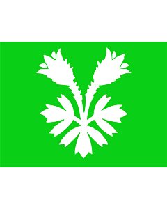 Flagge: XXS Oppland  |  Querformat Fahne | 0.24m² | 40x55cm
