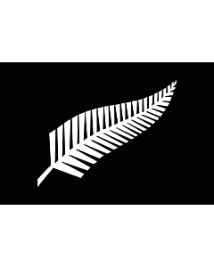 Drapeau: Silver fern | A Silver Fern flag, a proposed new New Zealand | Silberfarn-Flagge |  drapeau paysage | 1.35m² | 90x150cm