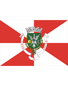 Flag: Aveiro District |  landscape flag | 0.24m² | 2.5sqft | 40x60cm | 1.3x2foot