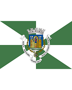 Flag: Porto District |  landscape flag | 0.24m² | 2.5sqft | 40x60cm | 1.3x2foot