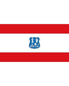 Flag: Asunción | Escudo y bandera de la ciudad según la Ordenanza 208/01 |  landscape flag | 1.35m² | 14.5sqft | 85x160cm | 35x60inch