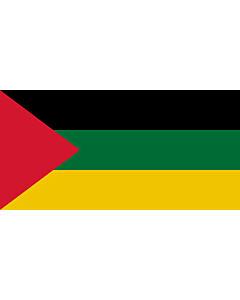 Flag: Hejaz from 1926 to 1932 |  landscape flag | 2.16m² | 23sqft | 100x200cm | 40x80inch