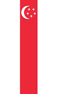 Drapeau: bannière drapau avec tunnel et avec crochets Singapour |  portrait flag | 6m² | 400x150cm