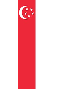 Drapeau: bannière drapau avec tunnel sans crochets Singapour |  portrait flag | 3.5m² | 300x120cm