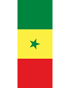 Vertical Hanging Beam Flag: Senegal |  portrait flag | 3.5m² | 38sqft | 300x120cm | 10x4ft