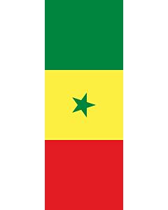 Drapeau: bannière drapau avec tunnel et avec crochets Sénégal |  portrait flag | 6m² | 400x150cm