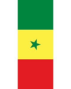 Drapeau: bannière drapau avec tunnel sans crochets Sénégal |  portrait flag | 3.5m² | 300x120cm