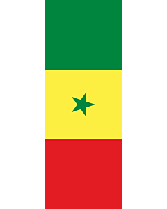 Vertical Hanging Swivel Crossbar Banner Flag: Senegal |  portrait flag | 6m² | 64sqft | 400x150cm | 13x5ft