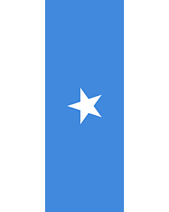 Vertical Hanging Swivel Crossbar Banner Flag: Somalia |  portrait flag | 6m² | 64sqft | 400x150cm | 13x5ft