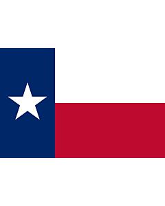 Table-Flag / Desk-Flag: Texas 15x25cm