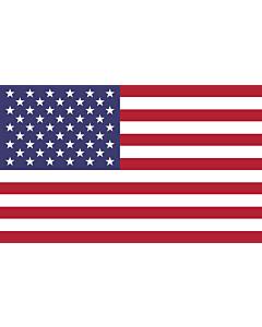 Table-Flag / Desk-Flag: United States 15x25cm