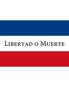 Bandera: Treinta y Tres |  bandera paisaje | 0.24m² | 40x60cm